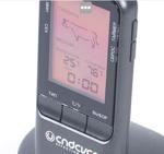 Беспроводной термощуп Endever Smart-06